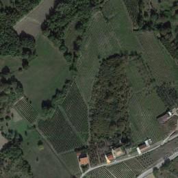 Über uns - Über den Kauf von Wein Italienisch