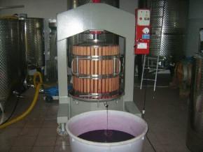 Macchia dei briganti: vini di Avellino Aglianico doc e Fiano di Avellino docg
