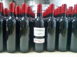 Comprare vino sfuso, vendita vino sfuso ad Avellino