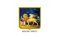 ORDINANZA REGIONE VENETO N.167 – 10 DICEMBRE 2020